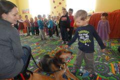 Goście ze schroniska ANIMALS